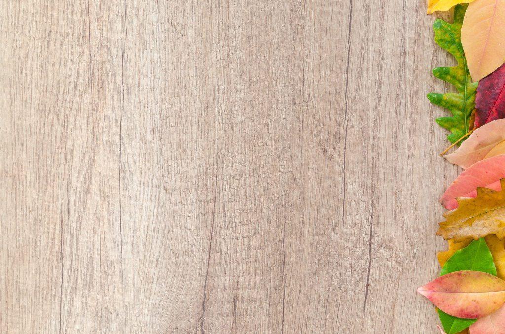 Eichenbretter von Holzhandel Online
